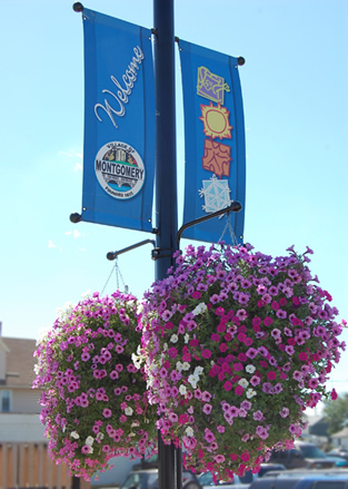 montgomery flag and flowers