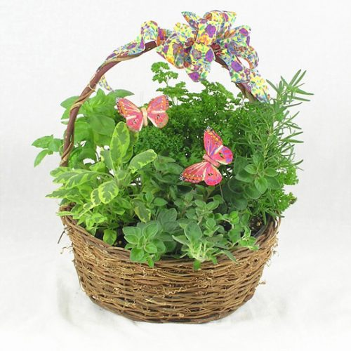 WW-195 Herb Basket